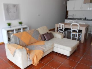 Comfortable House with Internet Access and Wireless Internet - Luso vacation rentals