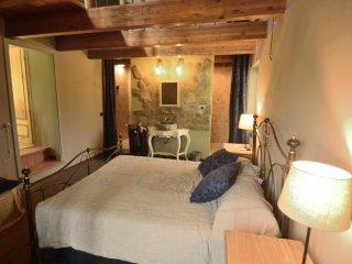"16th Century Hillside Stone Cottage By Town, Train & CinqueTerre ""Naturalist"" - Pontremoli vacation rentals"