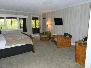 Cheat River Lodge WATERFRONT private entrance & bath. Pet friendly. HOT TUB! - Elkins vacation rentals