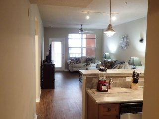 Downtown Post Harbour Island - Tampa vacation rentals
