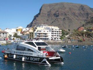 Apartment in Valle Gran Rey, La Gomera with amazing views - Vueltas vacation rentals