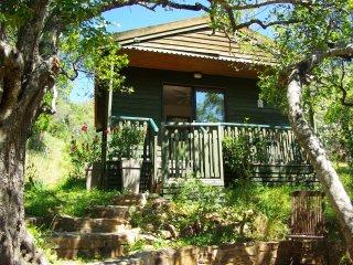 Chalet 2 / 4 personnes, salon cuisine, salle de douche, terrasse et piscine - Fonte do Bispo vacation rentals