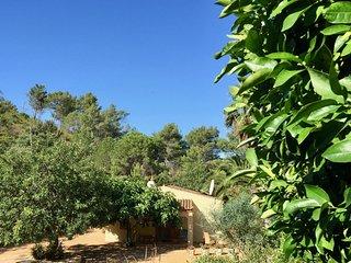 Cottage 2 à 6 personnes, salon/cuisine équipée, piscine - Fonte do Bispo vacation rentals