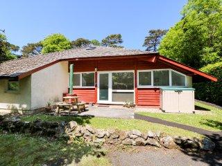 HEULWEN LODGE, sleeps six, open plan, near Amroth, Ref 956983 - Llanteg vacation rentals