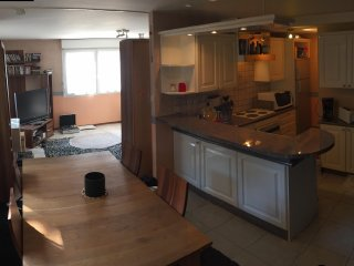 Belfort appartement meublé F4 duplex 140 M2 - Belfort vacation rentals