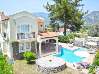 Three bedroom secluded villa for 6 people - Yesiluzumlu vacation rentals
