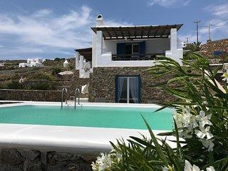 Beautiful 4 bedroom Villa in Panormos - Panormos vacation rentals