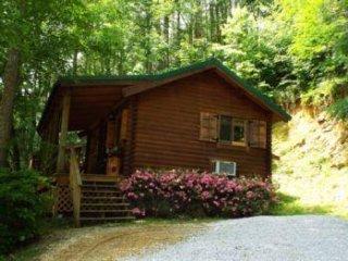 Faffoo Bear's Den - Cosby vacation rentals