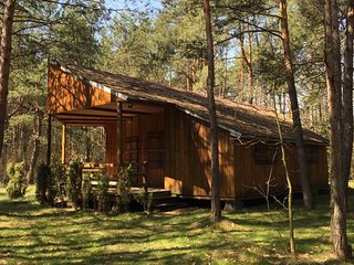 Country House in the forest - 1h from Warsaw - Wilga vacation rentals