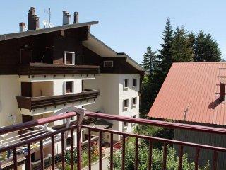 Nice apt with mountain view & Wifi - Camigliatello Silano vacation rentals