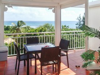 Tropical apartment near the beach - Pointe-à-Pitre vacation rentals
