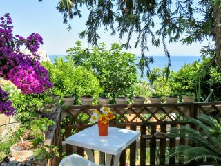 Traditional house 600m to the beach - Ville-di-Pietrabugno vacation rentals