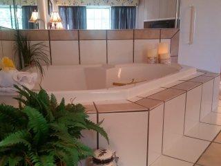 One bedroom Jacuzzi Suite - Branson vacation rentals