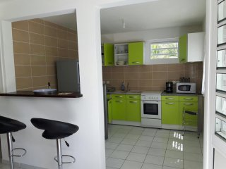 Beautiful apt with garden & terrace - Ducos vacation rentals