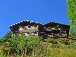 Wohnung 4 - Bettmeralp vacation rentals