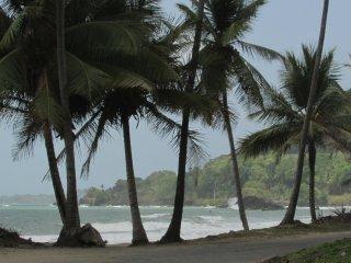 Camping on The Beach in Trinidad, Grande Riviere - Grande Riviere vacation rentals