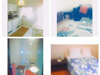 Comfortable 3 bedroom Apartment in Espinho - Espinho vacation rentals