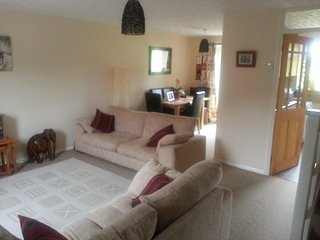 Lovely House with Internet Access and Satellite Or Cable TV - Waltham Abbey vacation rentals