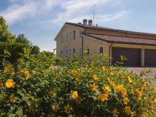 Agriturismo Il Brugnolo - lavanda - Scandiano vacation rentals