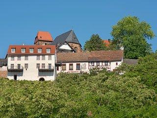Burggarten Appartements Neuleiningen - Neuleiningen vacation rentals