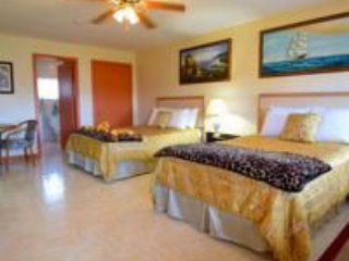 Nice Lodge with Internet Access and A/C - Cocoa Plum Cay vacation rentals