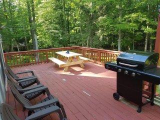 Pocono Mountains LAKESIDE Cabin Home at Lake Wallenpaupack - Greentown vacation rentals