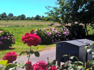 GITE à la campagne  - calme - vue superbe - La Gacilly vacation rentals
