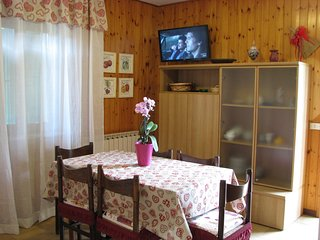 Nice Condo with Television and Microwave - Pievepelago vacation rentals