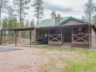 Cozy 3 bedroom Cabin in Hill City - Hill City vacation rentals