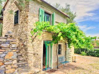 Nice 1 bedroom Farmhouse Barn in Diano Castello - Diano Castello vacation rentals