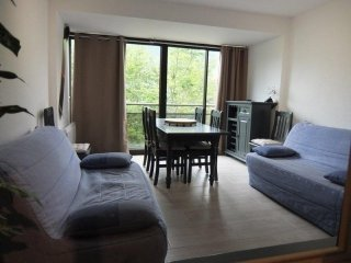 1 bedroom Condo with Television in Gourette - Gourette vacation rentals