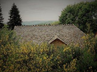 Le Domaine des Marequiers: le gite Aigremoine pour 8 personnes - La Canourgue vacation rentals