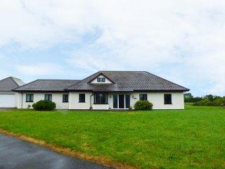 SALEM, sleeps eleven, ground floor, king-size, family home, Cross Inn, Ref - New Quay vacation rentals