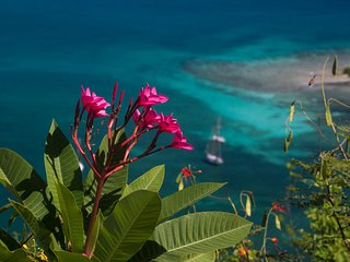 Astral Ridge: Magical Coral Bay Villa for 1-2 Romantic Couples or Small Family - Coral Bay vacation rentals