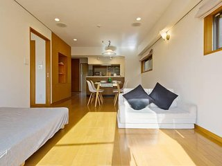 Shinjuku Huge apartment Sunny & Bright - Shinjuku vacation rentals