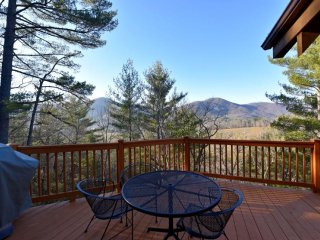 Mountain Oaks Cabin - Asheville vacation rentals