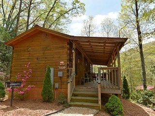 Red Barn-Tucked Snugly On A Hill Overlooking Mountains, Streams, & Wildlife - Laurel Park vacation rentals