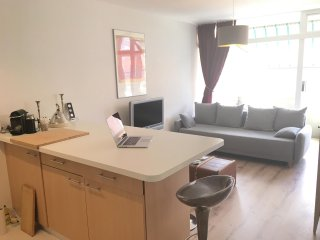 Nice 2 rooms apartment in the center of Sion - Sion vacation rentals