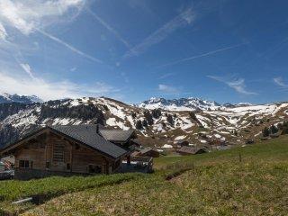 Luxueux chalet sur les pistes du Val d'Illiez - Les Crosets vacation rentals