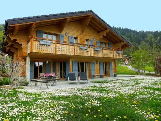 Bright House with Internet Access and Television - Villars-sur-Ollon vacation rentals