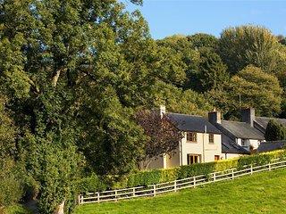 Pentrebach Cottage (PENTR) - Llandovery vacation rentals