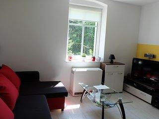 Sunny House with Internet Access and Wireless Internet - Szklarska Poreba vacation rentals