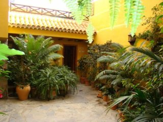 2 bedroom House with Television in Arico - Arico vacation rentals