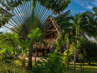 Chalet Tropical #3 : a Tree House with Ocean colours! - Las Galeras vacation rentals