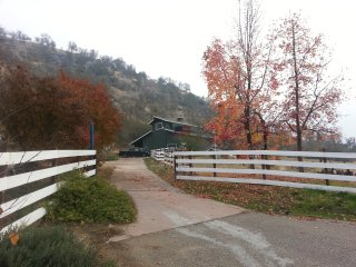 Beautiful House with Deck and Internet Access - Springville vacation rentals