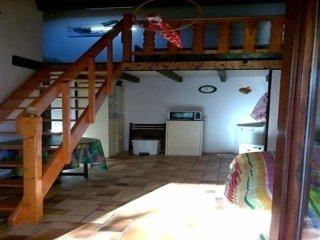Nice 1 bedroom House in Biscarrosse - Biscarrosse vacation rentals