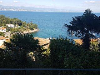 Nice apt with swimming-pool & Wifi - Ika vacation rentals