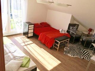 ap. 3,5, dans villa 20 min. des Vevey et Montreux - Bossonnens vacation rentals
