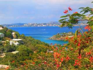 Heavenly Hibiscus views! Minutes to town with affordable rates and a pool! - Cruz Bay vacation rentals