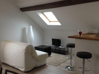 W039 – Pleasant F2 in the heart of Fontainebleau - Fontainebleau vacation rentals